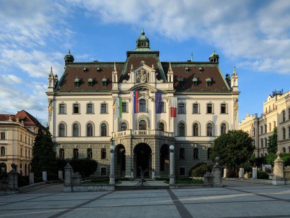 Univerza v Ljubljani izrez mala